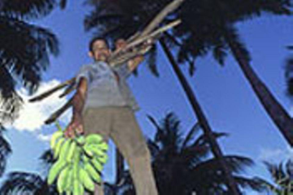 Kuba: Schutzgürtel für den Nationalpark