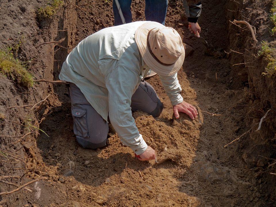 Berufe: En Archäologe bei der Arbeit: Boden abtragen, vergrabene Geheimnisse im Boden finden und deren Alter bestimmen
