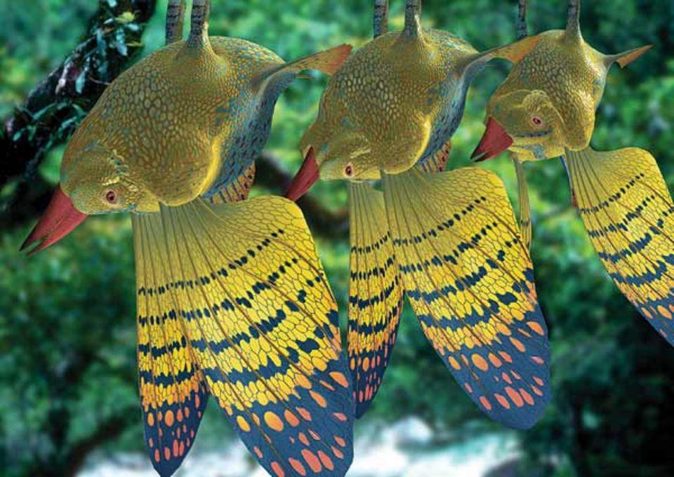 Kleine Waldflische hängen an den Ästen. Sie stammen von den Salzwasserfischen ab und fliegen mit den Brustflossen