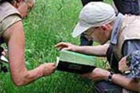 5. GEO-Tag der Artenvielfalt im Harz / Grünen Band