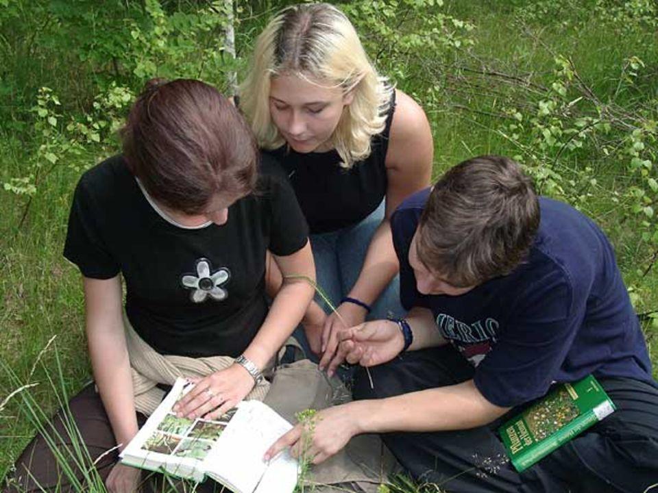 Drei Schüler eines Biologie-Leistungskurses (12. Klasse) des Heinrich-Heine-Gymnasiums, Ilsenburg