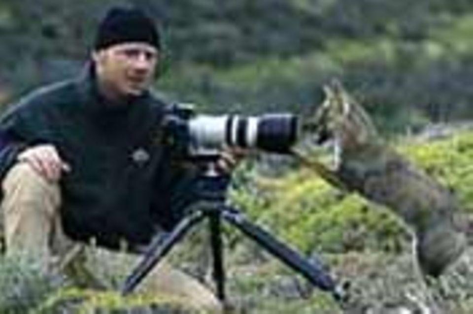 Tierfotograf Ingo Arndt: Hanuman-Languren, Epauletten-Flughunde und Co.