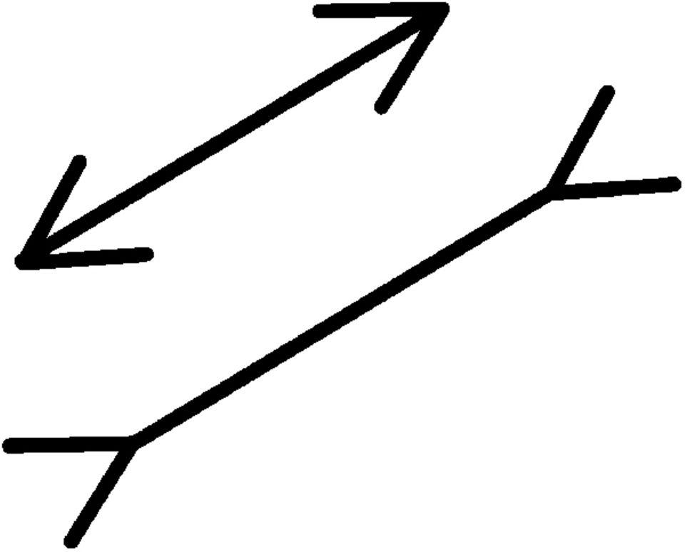 Optische Täuschungen: Sind die Strecken zwischen den Pfeilspitzen gleich lang, was meint ihr?