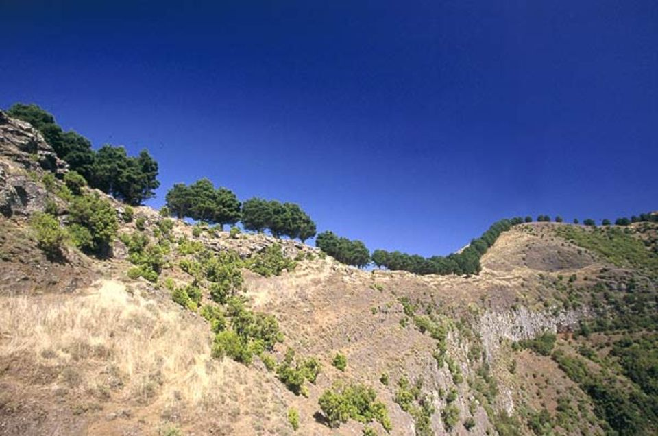 Eine typische Landschaft im Landesinneren