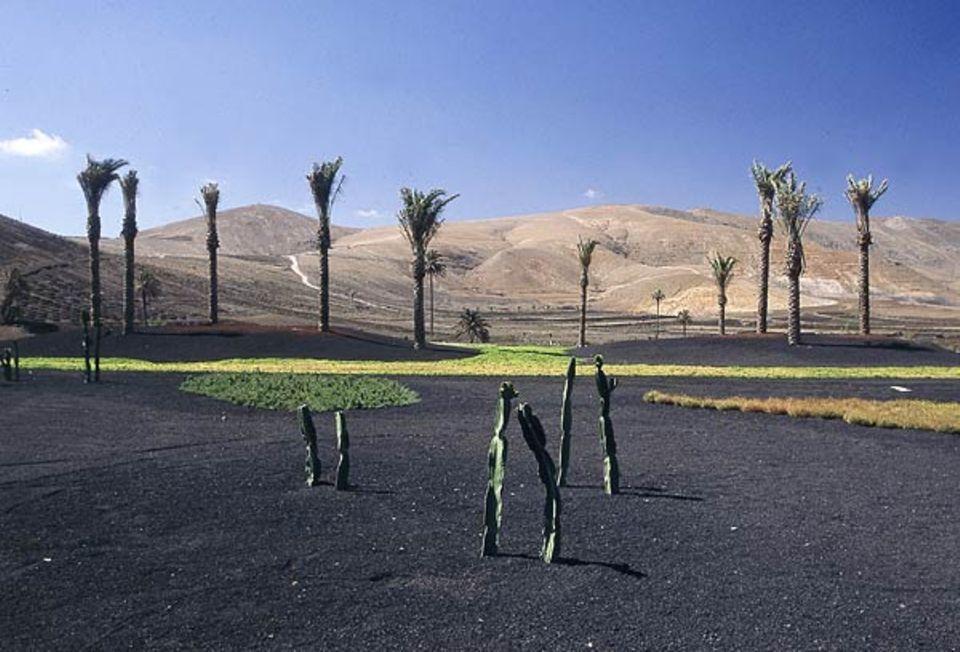 Vulkanlandschaften auf Lanzarote