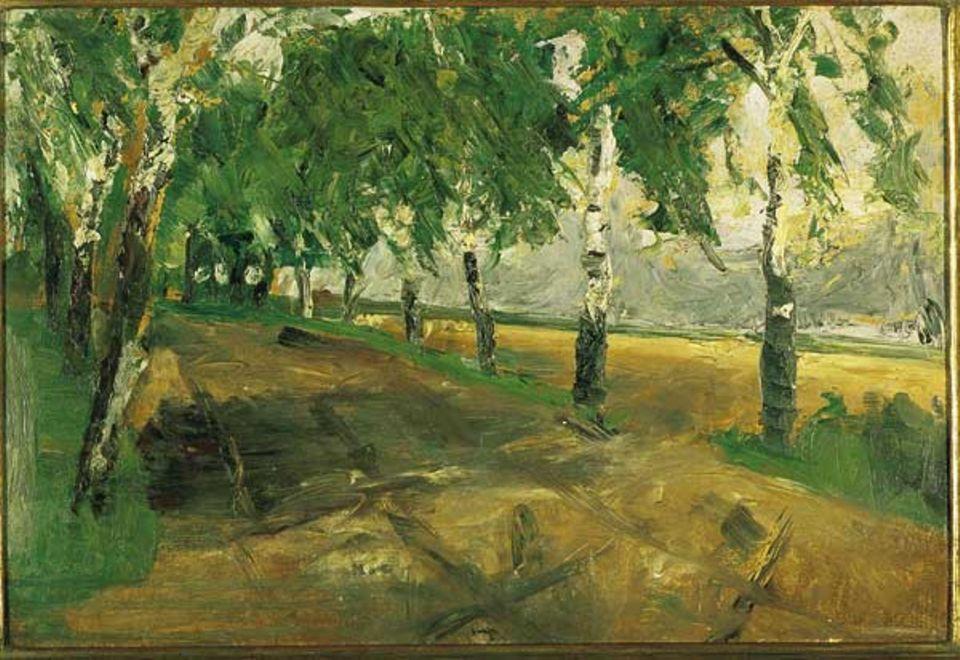 Birkenallee, 1897
