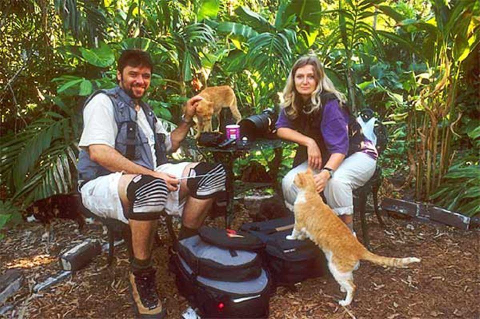 Beruf: Mehr als 40 Katzen leben auf dem Grundstück des berühmten Schriftstellers Ernest Hemingway, der 1961 starb. Die Kochs haben sie porträtiert