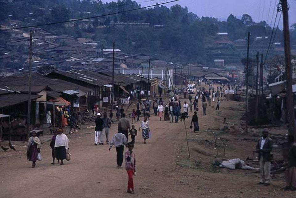 Die Schule steht in Bonga, der Hauptstadt der Provinz Kaffa. Dort leben 20 000 Menschen, die meisten in einfachen Wellblech-Hütten