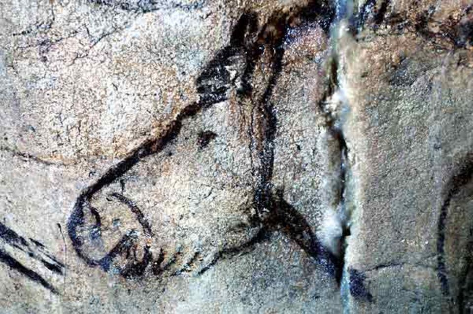 Ein Pferdeporträt aus der Höhle Niaux (Südwest-Frankreich)