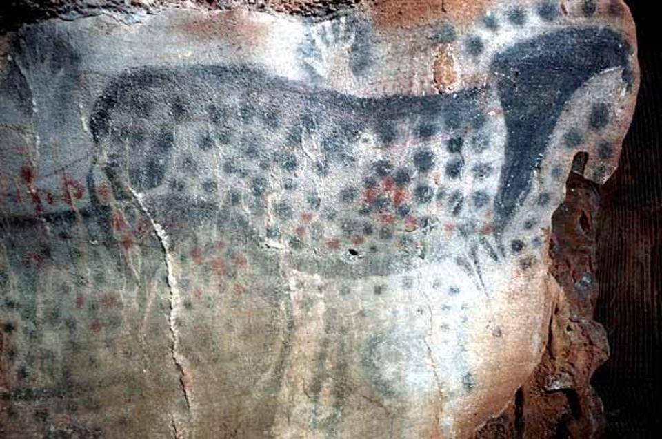 """Handnegative und """"gepunktete"""" Pferde in der Höhle Pech-Merle (Südwest-Frankreich)"""