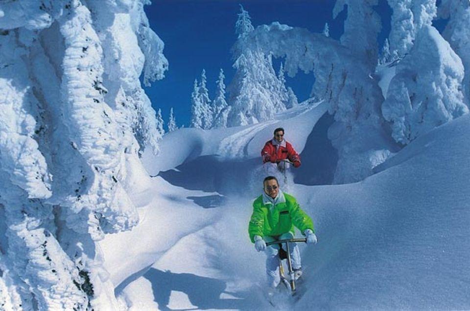 Snowbiken - ein rasanter Fahrspaß