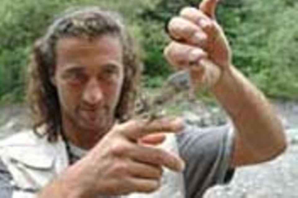 6. GEO-Tag der Artenvielfalt in Tirol: ein Foto-Tagebuch