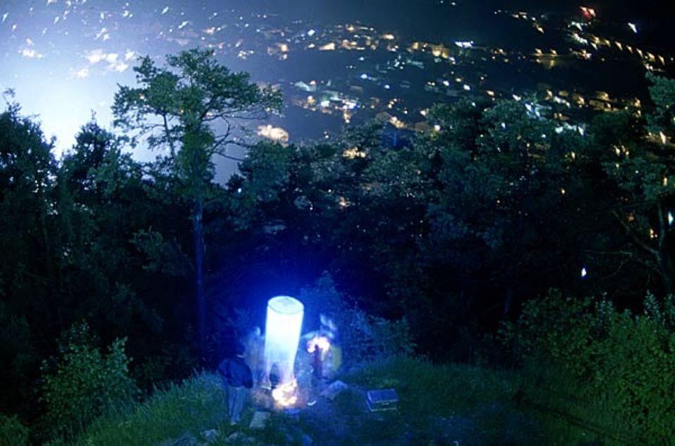 Diese Leuchtfalle zieht Nachtfalter magisch an
