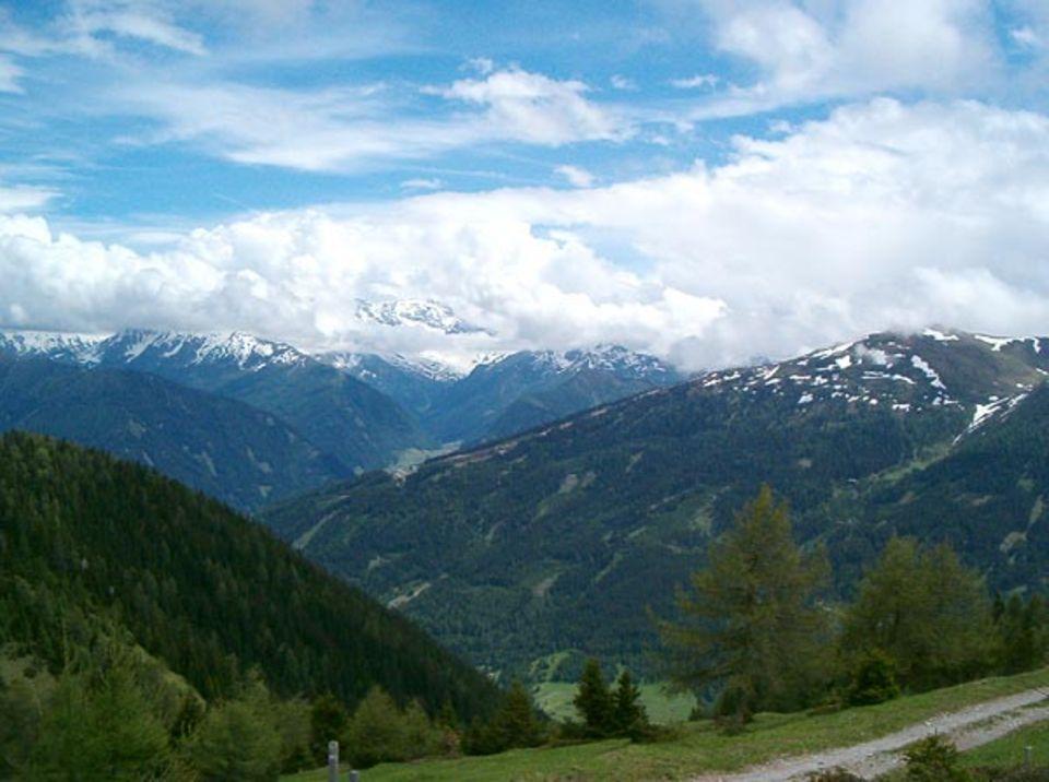 Wolkenvergangene Hänge im Gschnitztal