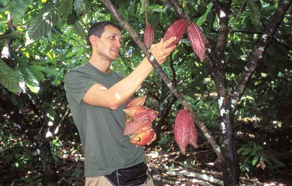 Guten Kakao erkennt Gianluca Franzoni, wenn er ihn fühlt