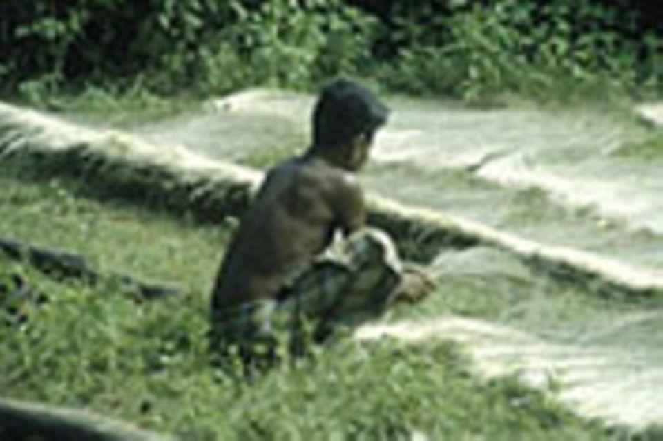 Indien: Erhalt der Vielfalt