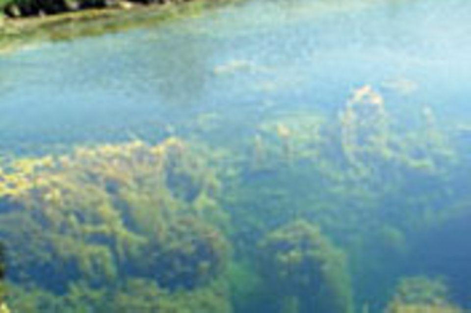 Diebach-Oestheim: Das bodenlose Loch