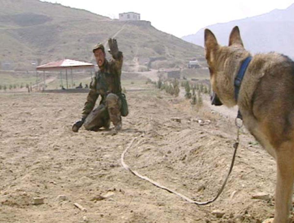 Die Minensucher von Kabul