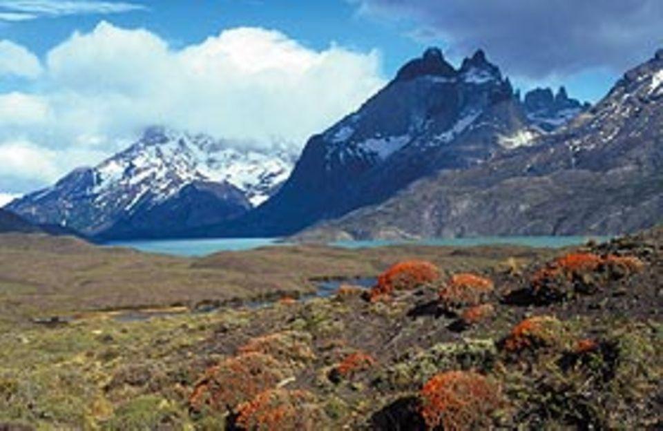 Hauptpreis: Eine Reise nach Chile im Wert von 7.500 Euro