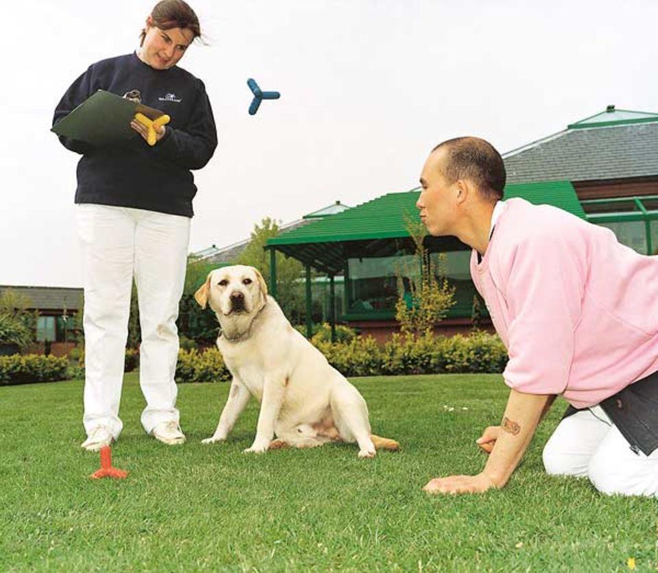Guck mal, was da fliegt! Auch das Spiel auf dem Rasen dient einem höheren Zweck: herauszufinden, welches Spaßgerät bei Hund - und Herr - am besten ankommt