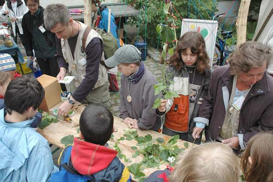 """Nach dem Zug durch den Berliner Tiergarten werten die Kinder ihre gesammelten """"Schätze"""" mit Hilfe der Umweltpädagogen aus"""