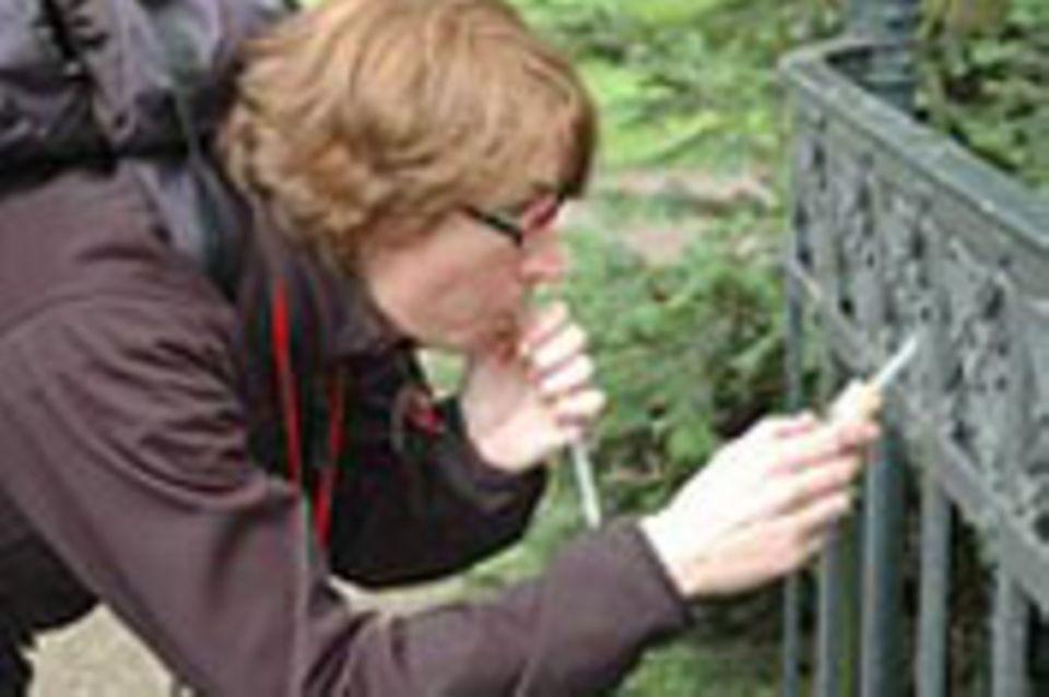 7. GEO-Tag der Artenvielfalt in Berlin: Fotoshow
