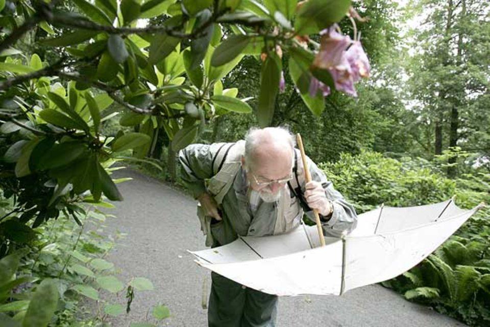 Der Käferkundler Joachim Schulze beim Einsammeln von Käfern in seinem Fangschirm
