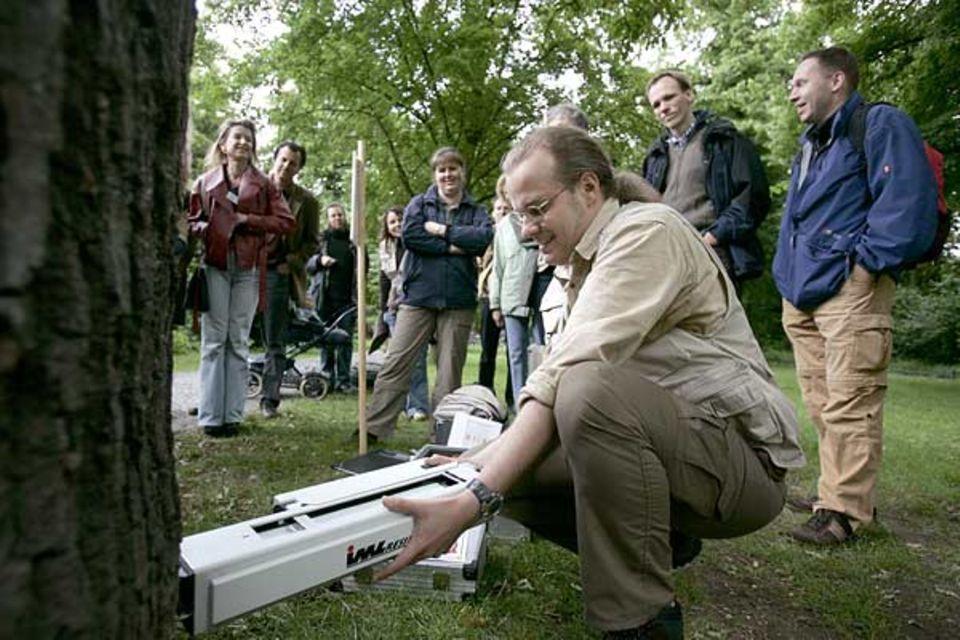Der Baumexperte Nicolas A. Klöhn misst die Widerstandskraft der Restwandstärke eines bereits geschädigten Baumes. Dadurch kann er feststellen, ob ein Baum gefällt werden muss oder erhalten werden kann