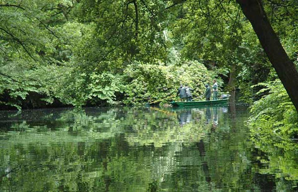 Fischexperten untersuchen die Fauna eines Gewässers im Berliner Tiergarten
