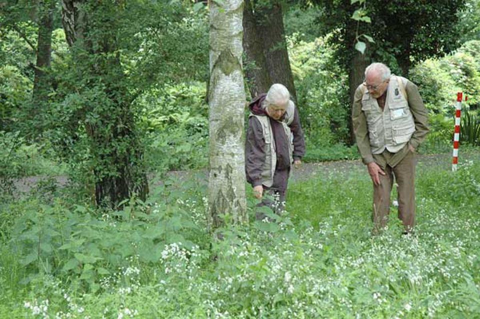 Zwei der 100 Experten stapfen durch das Grün im Tiergarten. Den Blick immer nach unten gerichtet, damit kein Fund übersehen wird