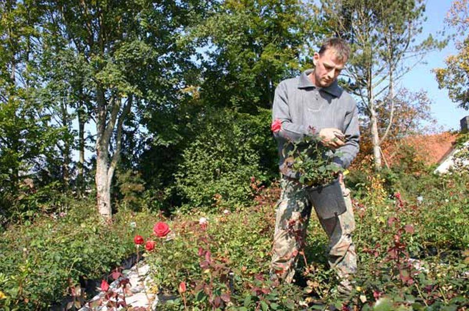 Beruf: Pflanzen, pflegen, umtopfen, beschneiden - bis die Blätter sprießen und die Blumen blühen