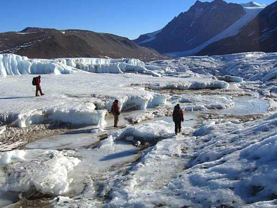 """Der """"Canada Glacier"""" ragt als weiße Raupe in das Taylor Valley hinein"""