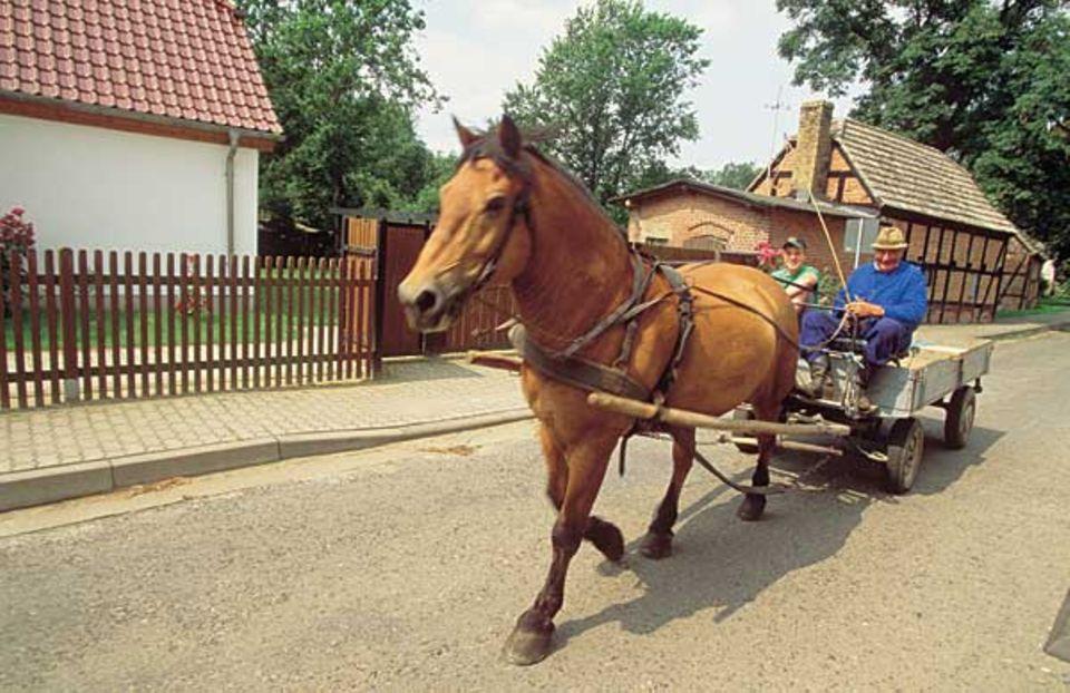 Bilder wie aus vergangenen Zeiten: Durchgangsverkehr in Wustrow