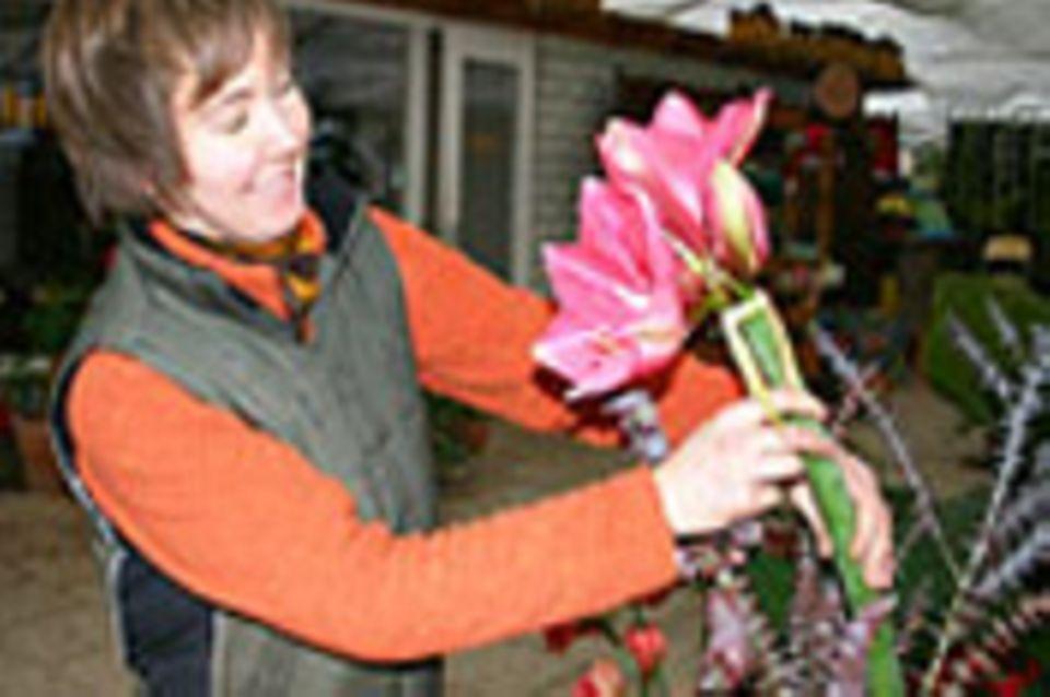 Beruf: Florist