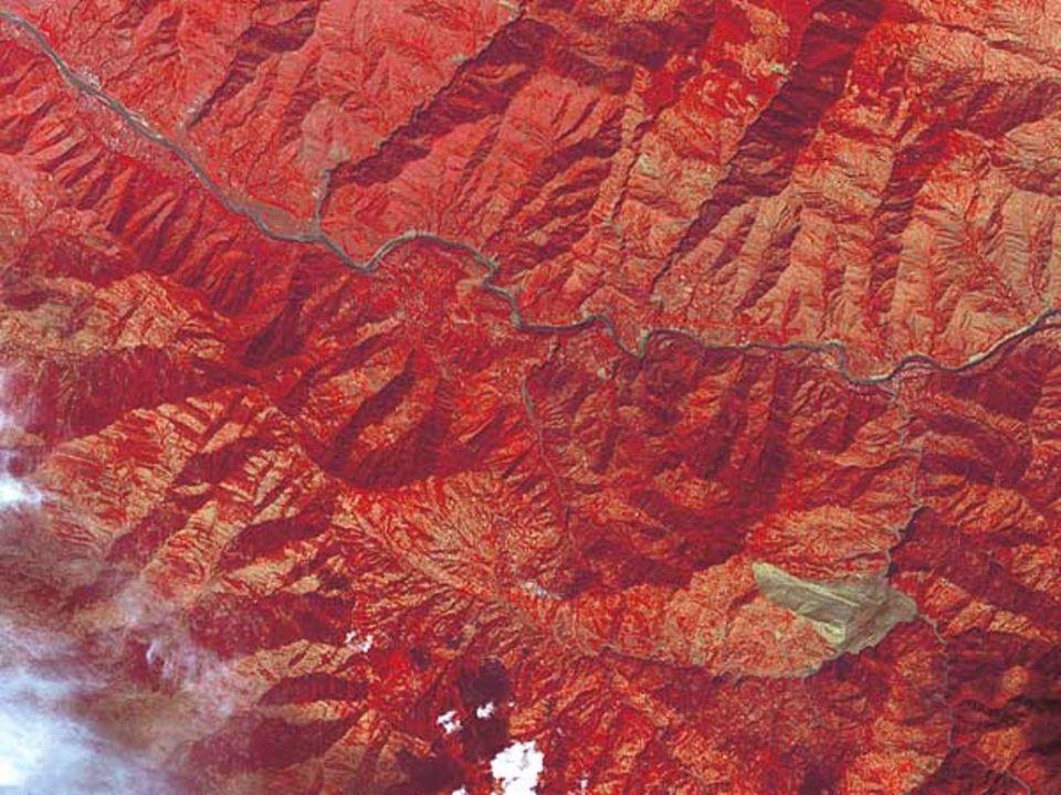Das Beben im Grenzgebiet zwischen Pakistan und Indien hatte die Stärke 7,6. Die radiometrische Aufnahme zeigt südlich des Flusses Jhelum einen gewaltigen Erdrutsch (graugrün)