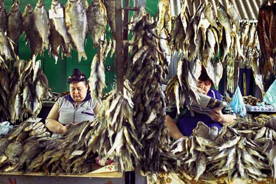 Versteckt hinter einem reichen Stockfisch-Angebot geben sich die Verkäuferinnen auf dem Privoz-Markt ihrer Lektüre hin
