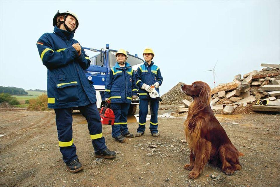 Auch mit den Rettungshunden muss geübt werden: Irish Setter Aidan soll Verschüttete in den Trümmern aufspüren