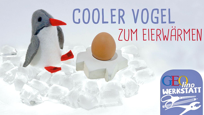 Eierwärmer aus Filz Filzfigur Pinguin