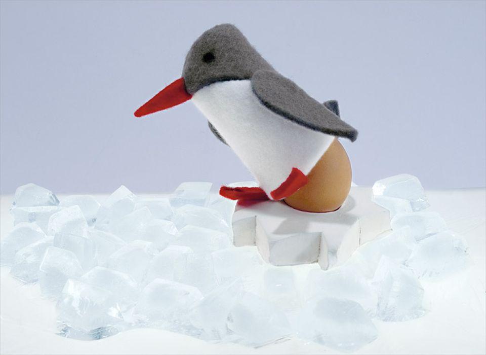 Grüße aus der Antarktis: Cooler Vogel zum Eierwärmen