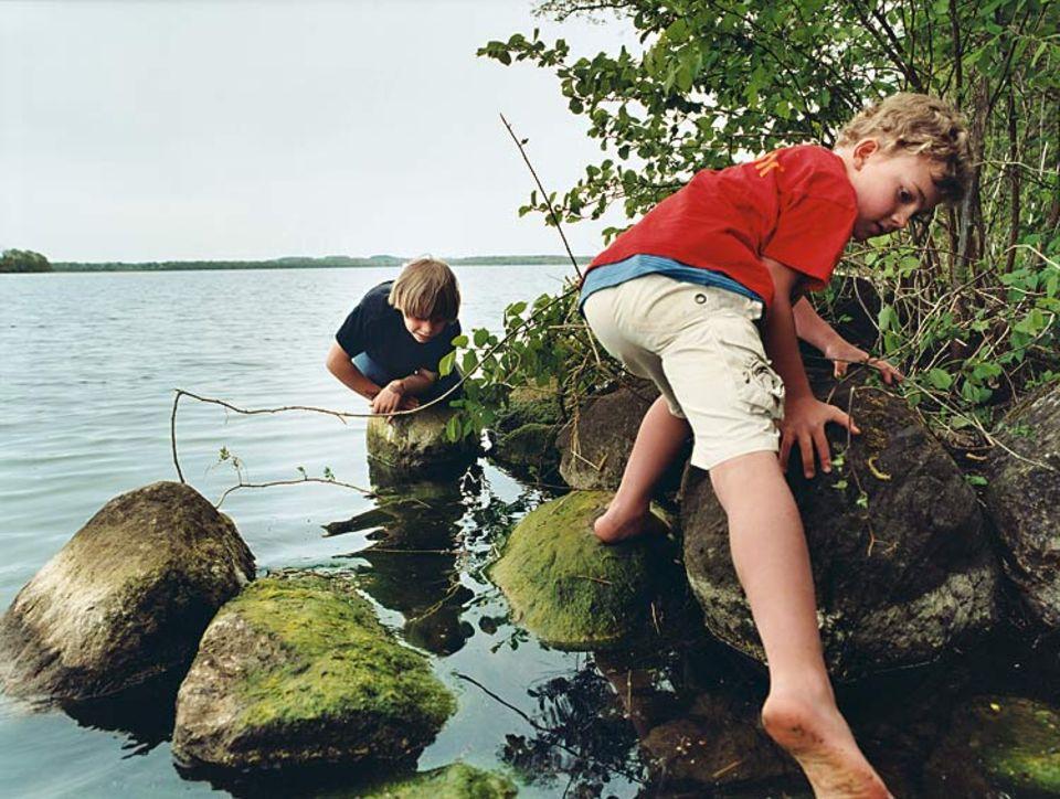 Ganz schön glitschig, so ein algenbewachsener Stein. Im Wasser lebt jede Menge Kleingetier: Tellerschnecken, Dreiecksmuscheln und Wasserasseln zum Beispiel