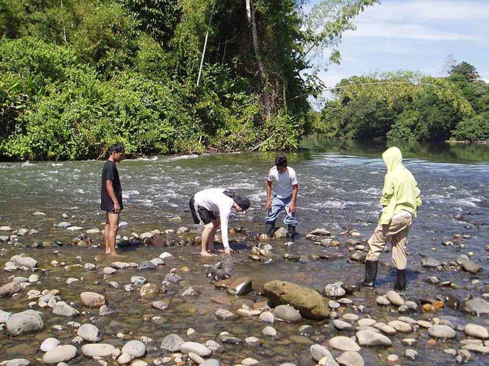 Nach einem Bootsschaden sind die Insassen auf einer Insel im Fluss gestrandet