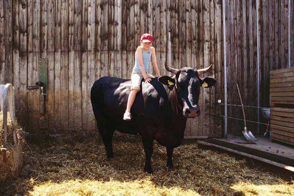 Auf Pferden reiten? Wie langweilig! Leah trabt lieber auf Flitzer, der schwarzen Kuh, durch den Stall