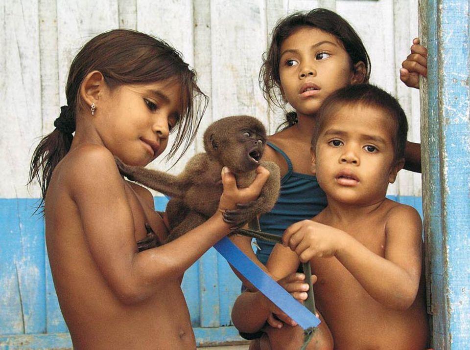 In den Siedlungen am Fluss werden Affenkinder oft als Schmusetiere gehalten. Für Wissenschaftler allerdings sind diese Tiere oft Schätze – weil sie noch unbekannt und in keinem Biologiebuch zu finden sind