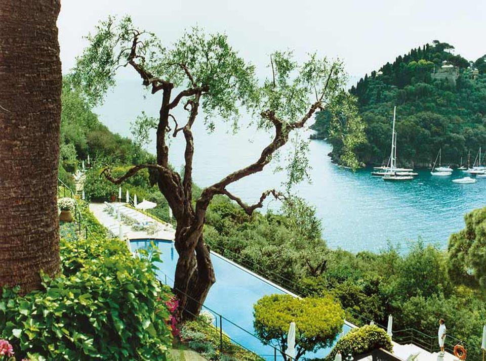 """Wer im """"Splendido"""" aus dem Fenster schaut, hat den Luxus vor Augen: ein beheizter Salzwasserpool im üppigen Garten, dahinter Liguriens Küsten als prächtige Kulisse"""