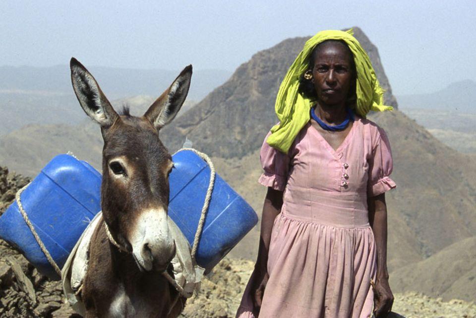 Mit ihrem neuen Esel Fiori kann Lemlem zwei statt nur einen Kanister Wasser von der Quelle in ihr Dorf transportieren