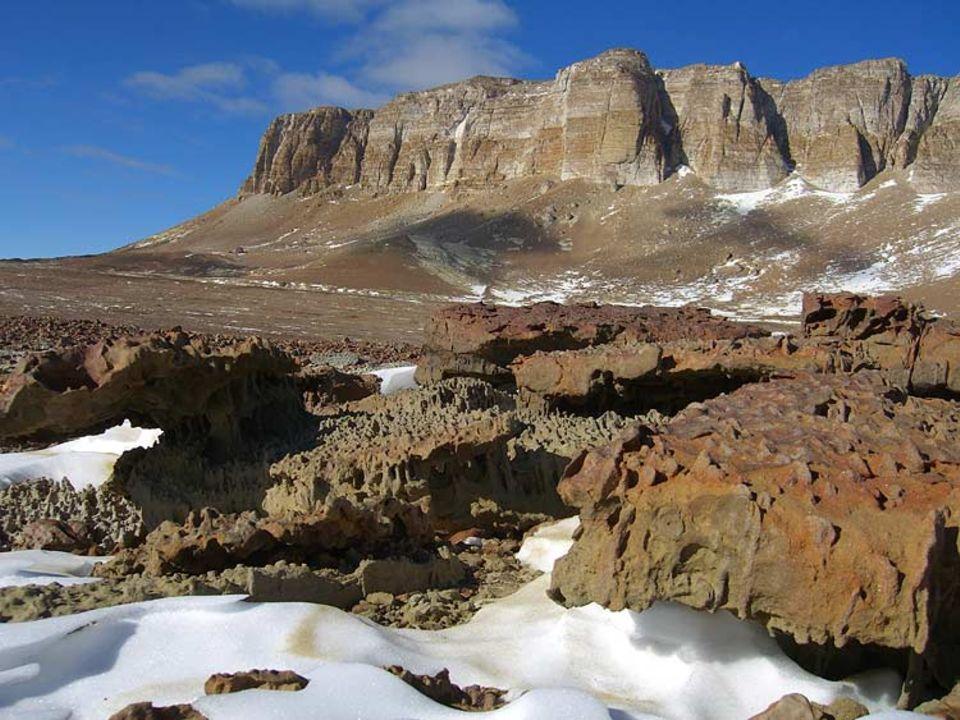 Was von Gondwana übrig blieb: In der heutigen Permafrost-Wüste der Antarktis wucherten vor 250 Millionen Jahren Sümpfe und Regenwälder