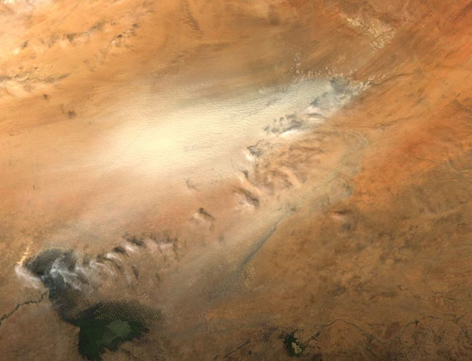 November 2004: Ein gewaltiger Sandsturm wütet in der Bodélé-Niederung. Das Foto machte das Moderate Resolution Imaging Spectroradiometer (MODIS) an Bord des NASA-Satelliten Aqua