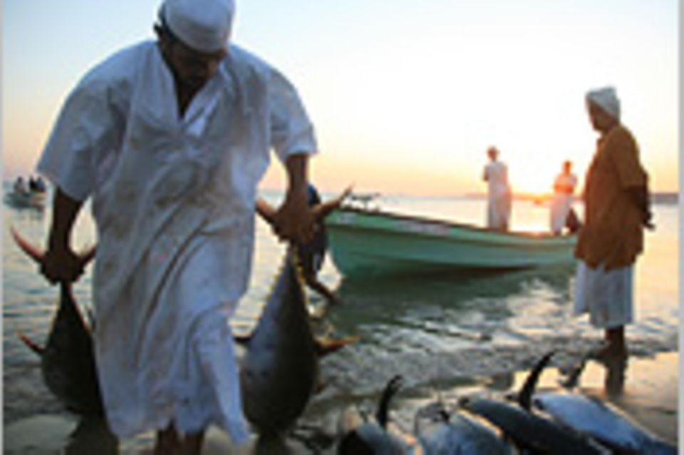 Oman: Ein Reisemärchen