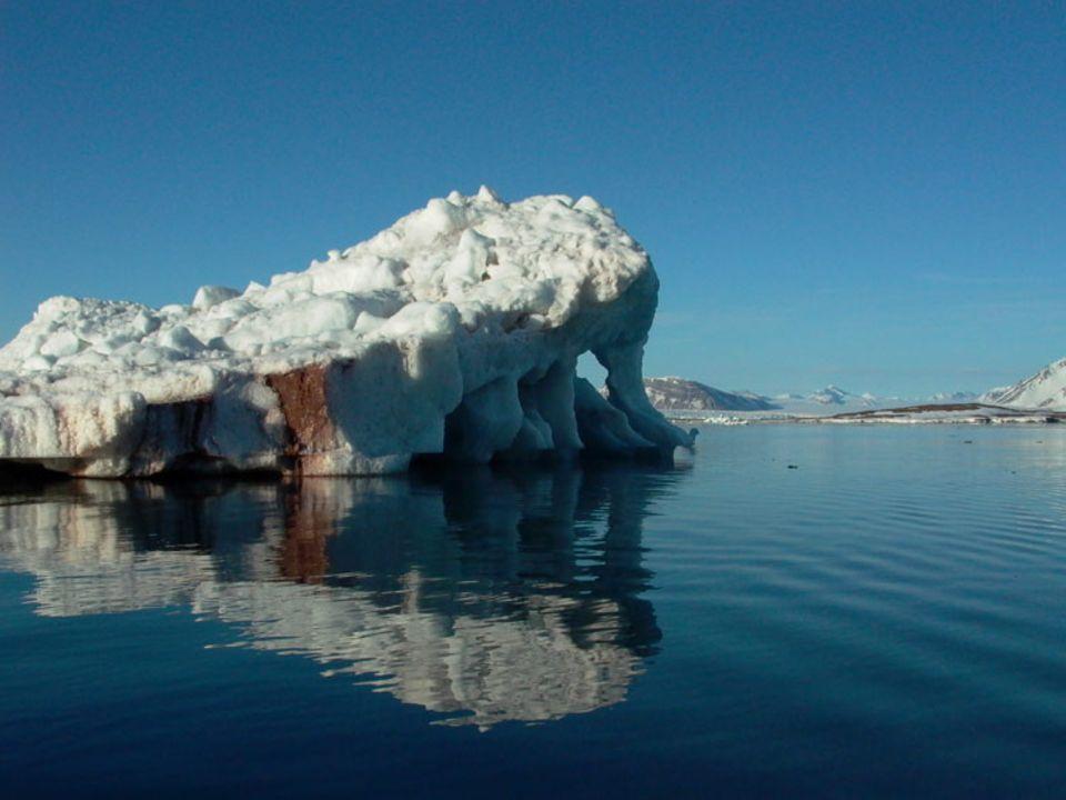 Im zwanzigsten Jahrhundert stieg der Meeresspiegel um 17 Zentimeter an. Verantwortlich dafür ist unter anderem das Abschmelzen der Polkappen