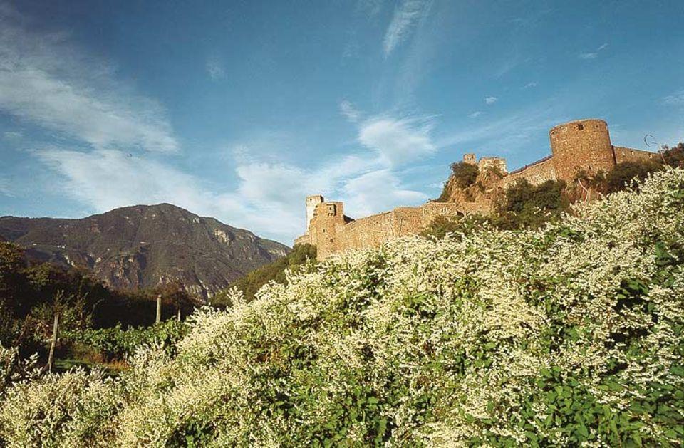 Das Hauptquartier trägt den Namen Firmian und residiert auf Schloss Sigmundskron. Hier vereinen sich Naturkulisse, Nimbus der Historie, architektionische Kunstgriffe und exotische Exponate zum alpinen Gesamtkunstwerk